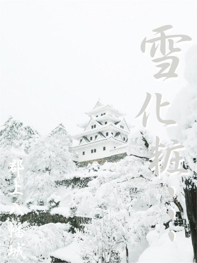 天空の城 郡上八幡城 雪